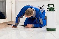 Weed and Pest Control Packages