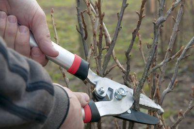 When is Pruning Necessary?