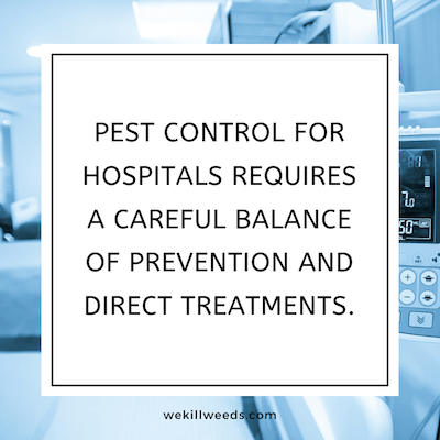 Pest control for hospitals requires a careful balance of prevention and direct treatments. We use effective spraying techniques that are designed for safe use around vulnerable members of the population that you treat in your hospital.