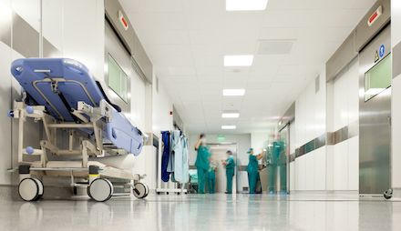 Best Practices for Pest Control in Hospitals