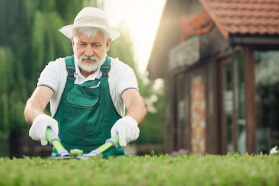 Trimming hedges - yard care for seniors