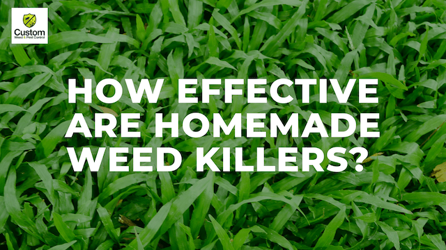 Are DIY weed killers effective?