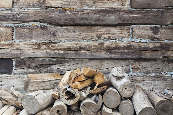 Stacked firewood outdoors which can be breeding grounds for pests.